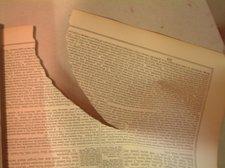 Bible_a6_5